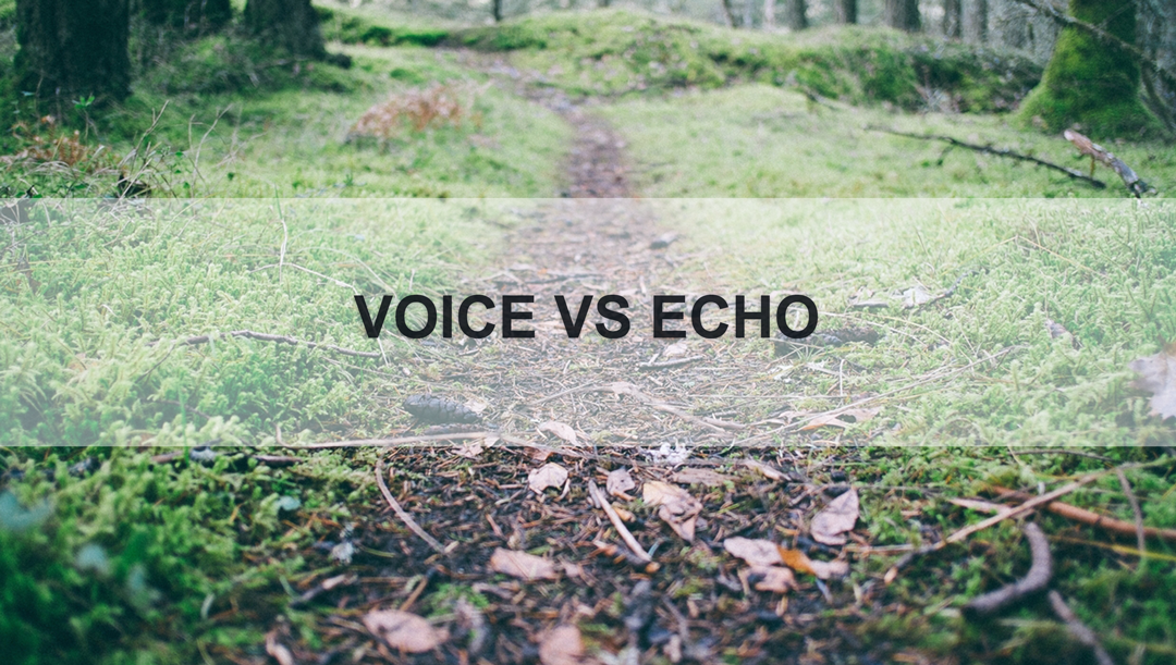 VoiceVSEcho