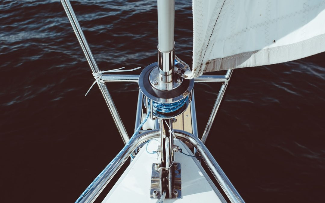 Navegando La Onda Del Entusiasmo